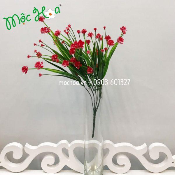 Hoa đá cỏ 35k (6)