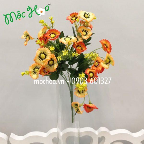 Hoa cúc mi 35k (3)